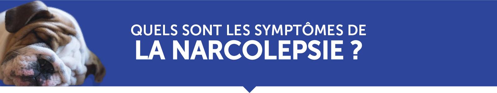 Quels sont les symptômes de la narcolepsie ?